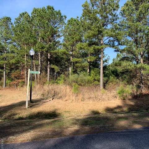 12 Necessity Lane, Hertford, NC 27944 (MLS #102498) :: AtCoastal Realty