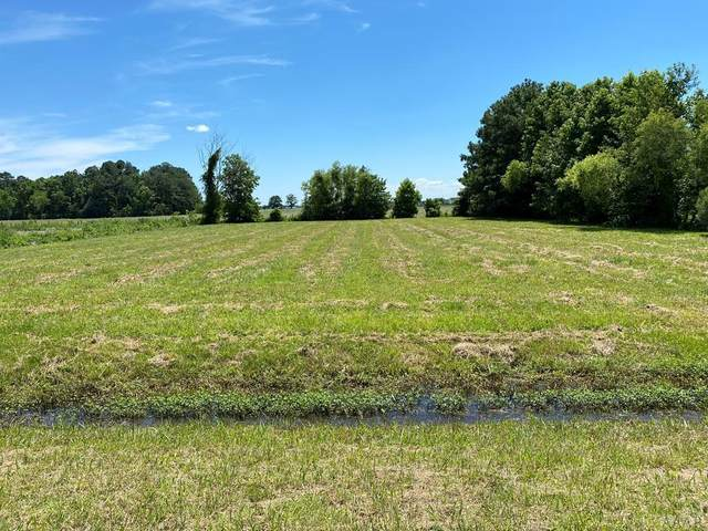 1009 Bateman Drive, Elizabeth City, NC 27909 (MLS #104443) :: AtCoastal Realty