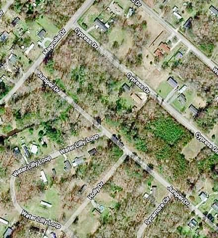 313 Juniper Drive, Edenton, NC 27932 (#104849) :: Atlantic Sotheby's International Realty