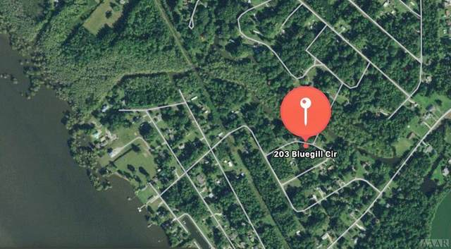 203 Bluegill Circle, Edenton, NC 27932 (#104851) :: Atlantic Sotheby's International Realty