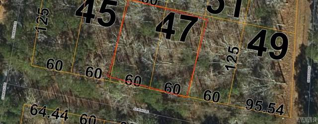 46 Seminole Trail, Hertford, NC 27944 (#105114) :: Atlantic Sotheby's International Realty
