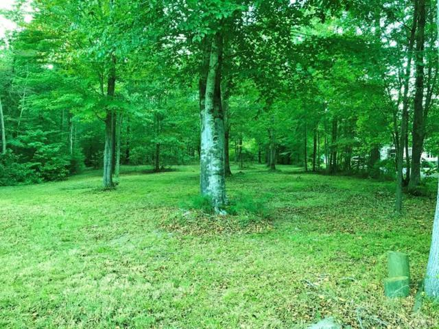 Lot 8 See View Lane, Hertford, NC 27944 (#90647) :: Atlantic Sotheby's International Realty
