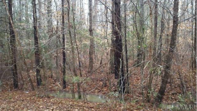N/A Potecasi Creek Road, Ahoskie, NC 27910 (MLS #92233) :: AtCoastal Realty