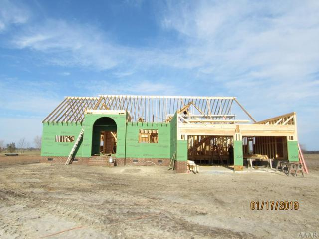 110 Lady Frances Way, Elizabeth City, NC 27909 (MLS #93610) :: Chantel Ray Real Estate