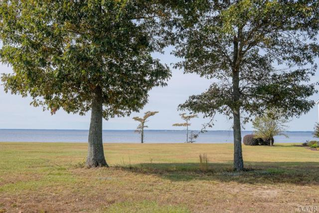 338 Bay Point Dr, Edenton, NC 27932 (MLS #93844) :: Chantel Ray Real Estate