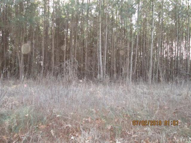 TBD Albemarle Road, Hertford, NC 27944 (MLS #93950) :: Chantel Ray Real Estate