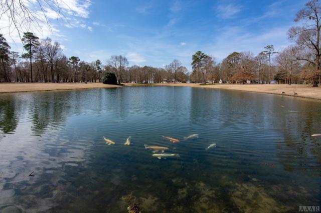 121 Lake Wood Dr, Edenton, NC 27932 (MLS #94358) :: Chantel Ray Real Estate