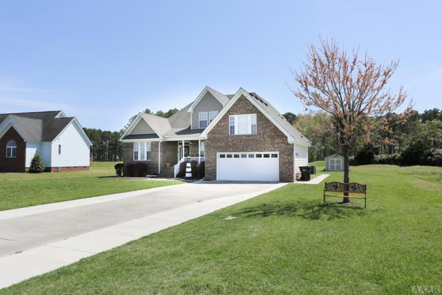 206 Ibis Way, Elizabeth City, NC 27909 (MLS #94816) :: Chantel Ray Real Estate