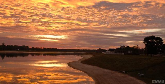 101 Schooner Landing Drive, Edenton, NC 27932 (MLS #94872) :: Chantel Ray Real Estate