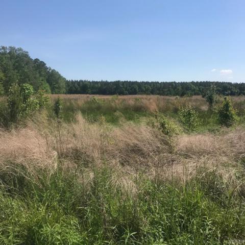109 Amy Landing Road, Shawboro, NC 27973 (MLS #95154) :: Chantel Ray Real Estate