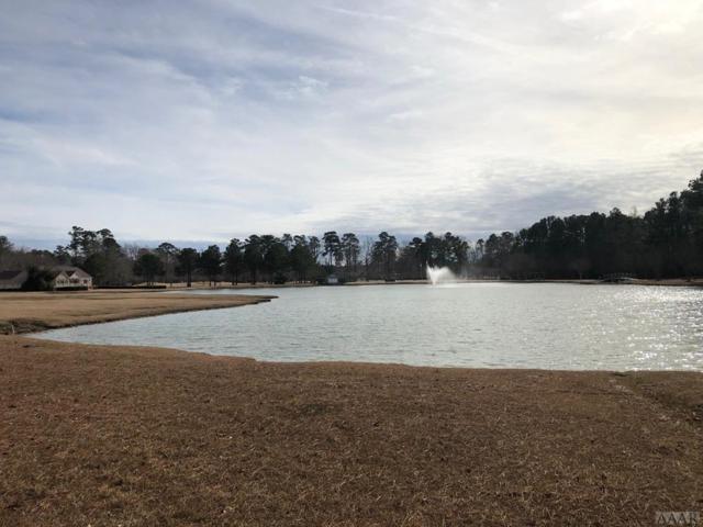 Lot 01 Lakeside Drive, Hertford, NC 27944 (MLS #95931) :: Chantel Ray Real Estate