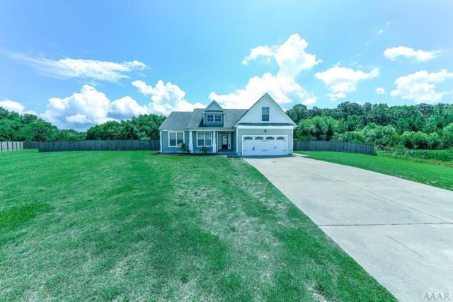 116 Black Walnut Drive, Elizabeth City, NC 27909 (MLS #96012) :: Chantel Ray Real Estate