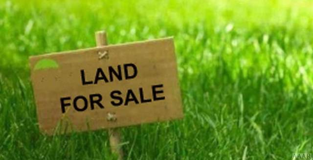 120 Ivy Trace, Elizabeth City, NC 27909 (MLS #96859) :: Chantel Ray Real Estate