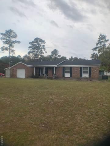 3121 Rocky Hock Road, Edenton, NC 27932 (MLS #97357) :: AtCoastal Realty