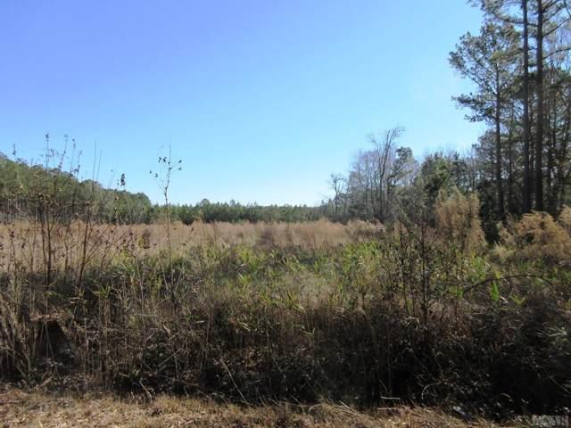 TBD Zion Road, Hobbsville, NC 27946 (MLS #98026) :: Chantel Ray Real Estate