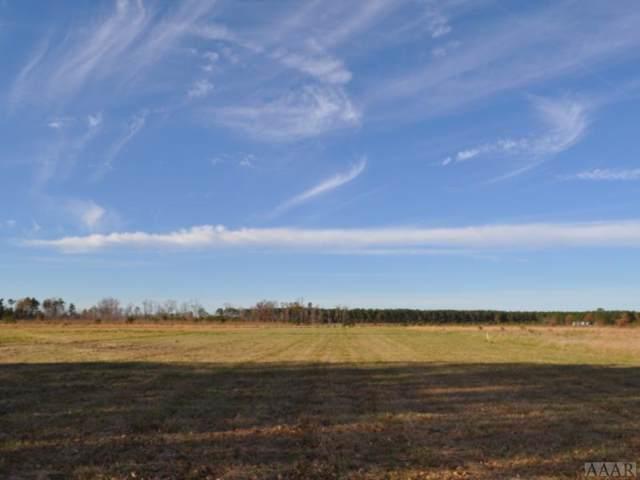132 Pelican Court, Edenton, NC 27932 (MLS #98223) :: Chantel Ray Real Estate