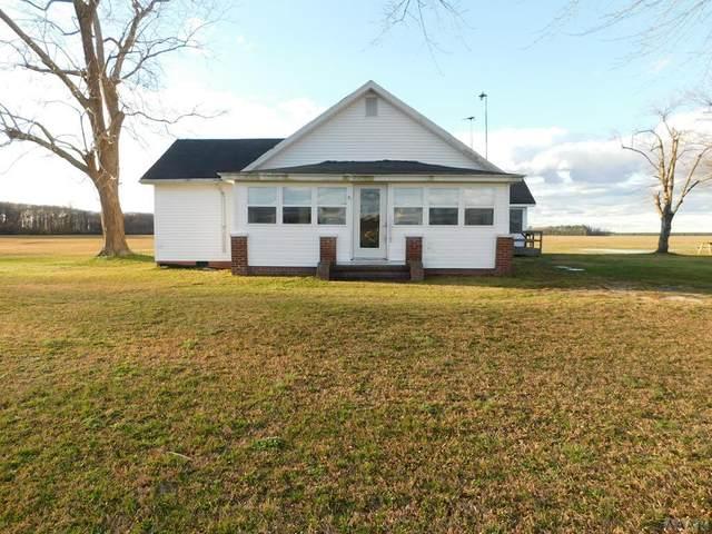 169 Four Mile Desert Rd, Hertford, NC 27944 (#98323) :: The Kris Weaver Real Estate Team