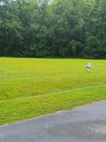 131 Becca Dr, Elizabeth City, NC 27909 (#104151) :: The Kris Weaver Real Estate Team