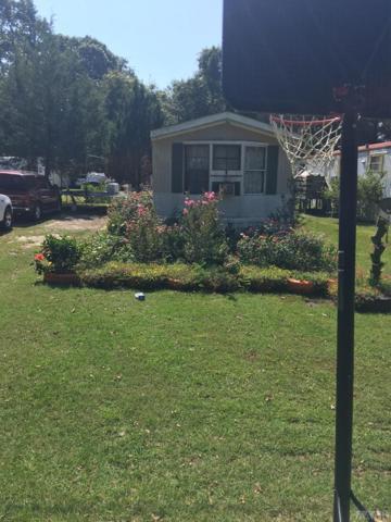 313 Manteo Trail, Edenton, NC 27932 (#92472) :: The Kris Weaver Real Estate Team