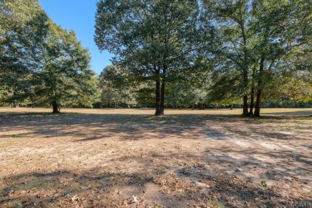 233 Lake Wood Dr, Edenton, NC 27932 (#92674) :: The Kris Weaver Real Estate Team