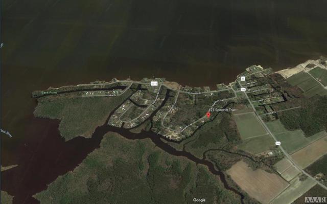 123 Spindrift Trail, Elizabeth City, NC 27909 (MLS #95063) :: Chantel Ray Real Estate