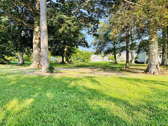 107 Pelican Pointe Drive, Elizabeth City, NC 27909 (MLS #99698) :: AtCoastal Realty