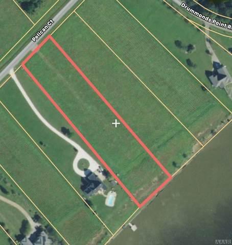 109 Pelican Court, Edenton, NC 27932 (#97378) :: The Kris Weaver Real Estate Team