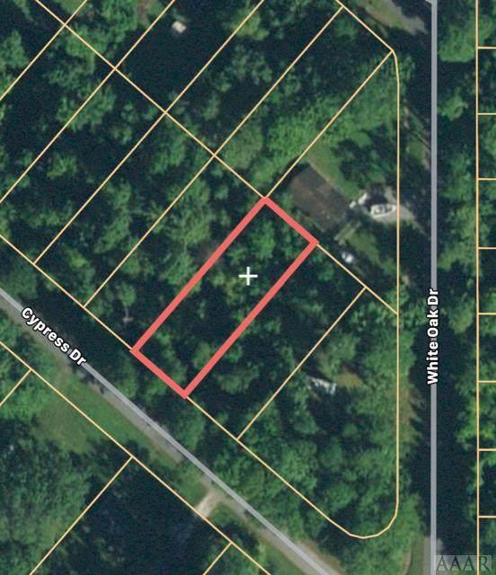 373 Cypress Drive, Edenton, NC 27932 (#100032) :: The Kris Weaver Real Estate Team