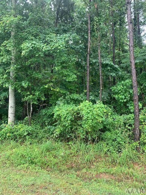 119 Dozier Road, Moyock, NC 27958 (#104140) :: The Kris Weaver Real Estate Team