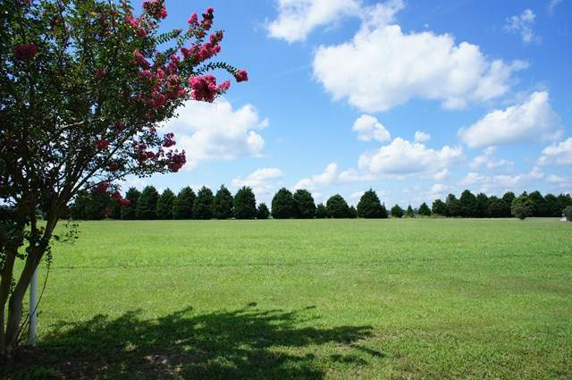 319 Gov Eden House Road, Merry Hill, NC 27957 (MLS #104189) :: AtCoastal Realty