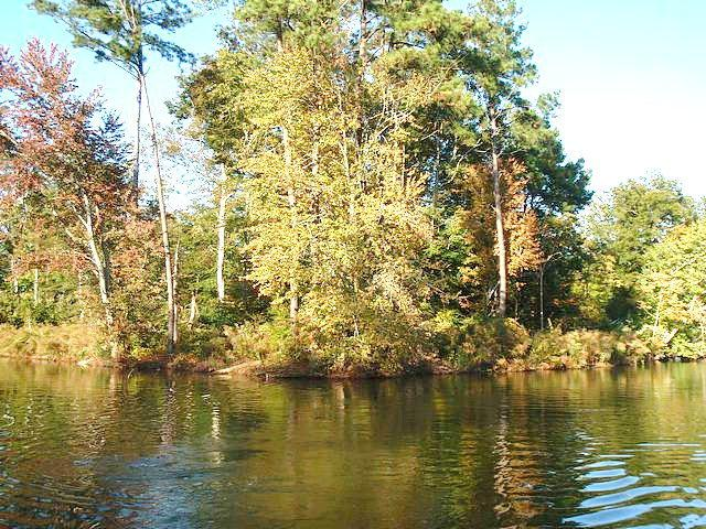 000 Cherry Street, Hertford, NC 27944 (MLS #72194) :: Chantel Ray Real Estate