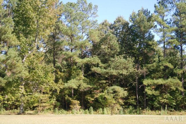 Lot  57 Snug Harbor Road, Hertford, NC 27944 (MLS #80278) :: Chantel Ray Real Estate
