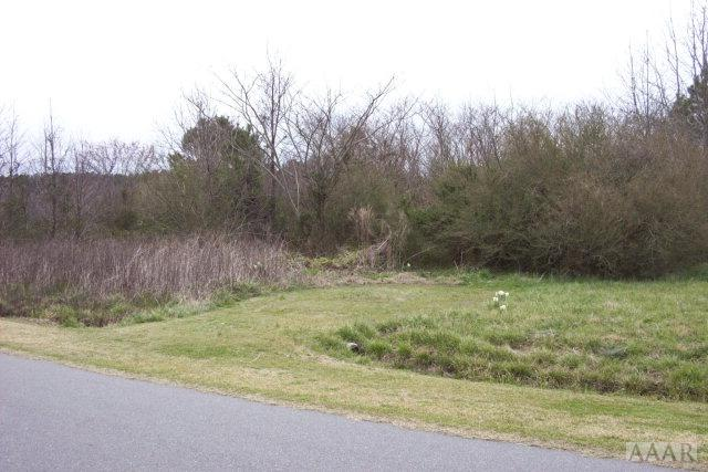 TBD Bateman Drive, Elizabeth City, NC 27909 (MLS #81773) :: Chantel Ray Real Estate