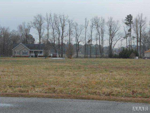 120 Taylors Way, Harrellsville, NC 27942 (MLS #82368) :: Chantel Ray Real Estate