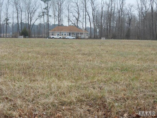 124 Taylors Way, Harrellsville, NC 27942 (MLS #82369) :: Chantel Ray Real Estate