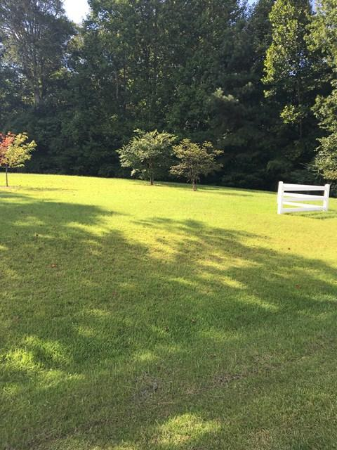 Lot 41B Riverwood Dr, Hertford, NC 27944 (MLS #83678) :: AtCoastal Realty