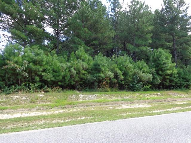 Lot # 18 Mariner's Court, Hertford, NC 27944 (#83865) :: Austin James Realty LLC
