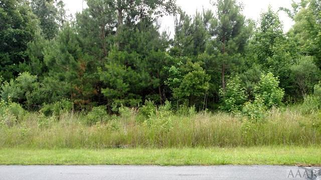 224 Osprey Drive, Edenton, NC 27932 (#86862) :: The Kris Weaver Real Estate Team