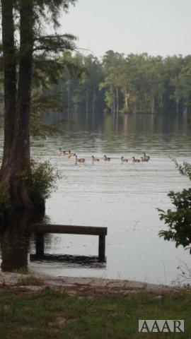 TBD Tuscarora Beach Road, Winton, NC 27986 (MLS #87444) :: Chantel Ray Real Estate