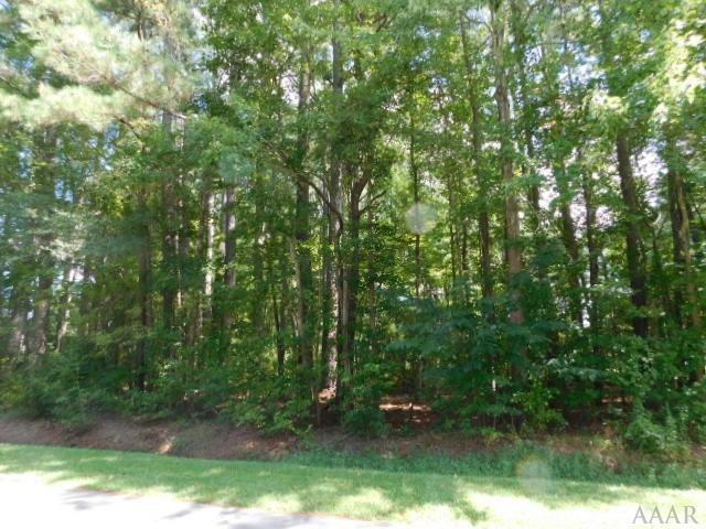 00 Alton Street, Elizabeth City, NC 27909 (MLS #87776) :: Chantel Ray Real Estate