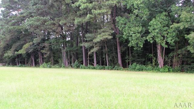 107 Golf Club Drive, Elizabeth City, NC 27909 (#87877) :: The Kris Weaver Real Estate Team