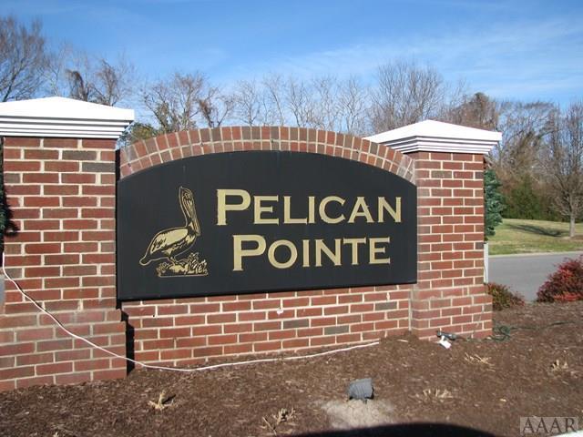 165 Pelican Pointe Drive, Elizabeth City, NC 27909 (MLS #88096) :: Chantel Ray Real Estate