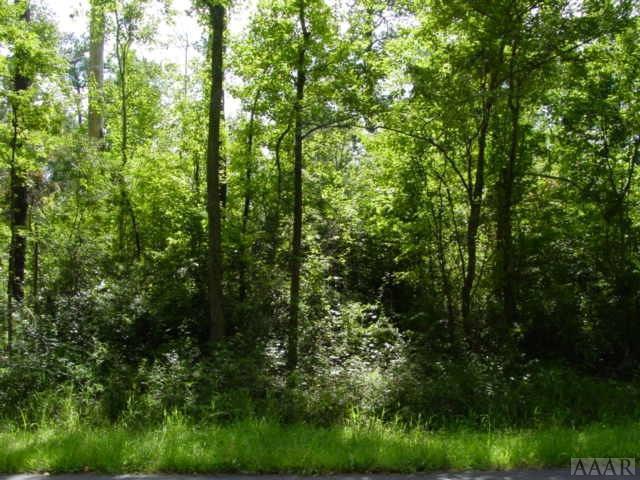 139-141 Willow Drive, Edenton, NC 27932 (MLS #88287) :: AtCoastal Realty