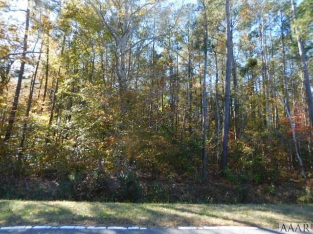 2436 Tulls Creek Road, Moyock, NC 27958 (MLS #88743) :: Chantel Ray Real Estate