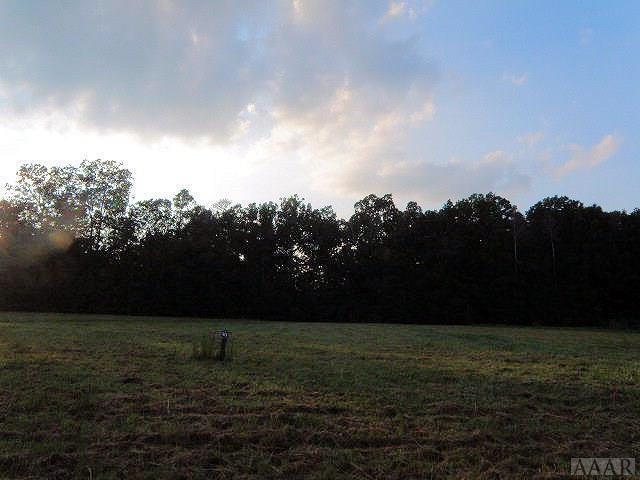 127 Mulberry Lane, Hertford, NC 27944 (#89113) :: The Kris Weaver Real Estate Team