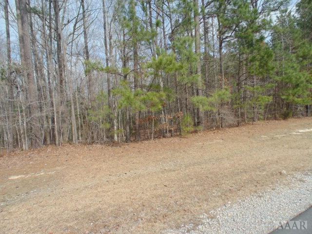 N/A Chowan Lane, Winton, NC 27986 (#89629) :: The Kris Weaver Real Estate Team