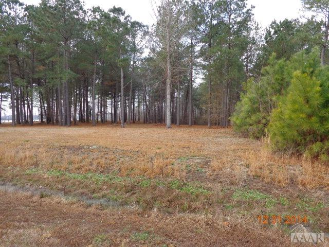 Lot # 9 Bethel Creek Lane, Hertford, NC 27944 (MLS #89845) :: AtCoastal Realty