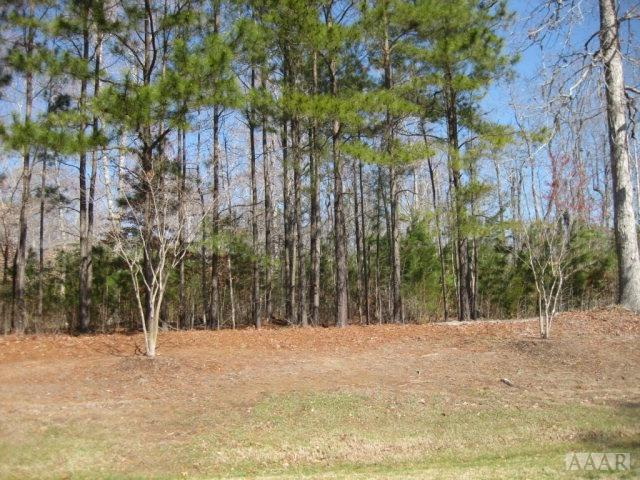 TBD Beech Point Dr, Hertford, NC 27944 (MLS #89964) :: Chantel Ray Real Estate