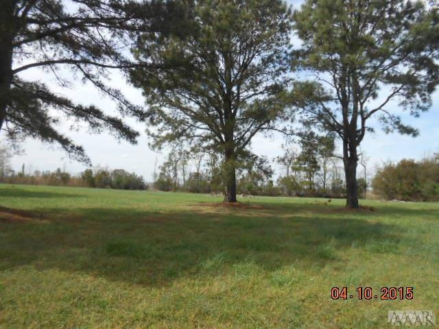 496 Country Estate Rd, Columbia, NC 27925 (MLS #90419) :: AtCoastal Realty