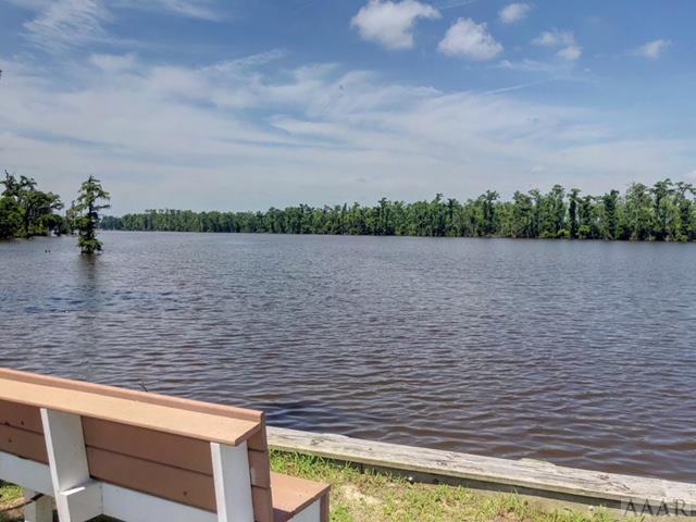 183 Colleton Circle, Edenton, NC 27932 (MLS #91488) :: Chantel Ray Real Estate